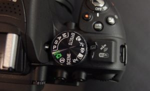 Not to Neglect the Big Guns Out There – DSLRs and Compacts